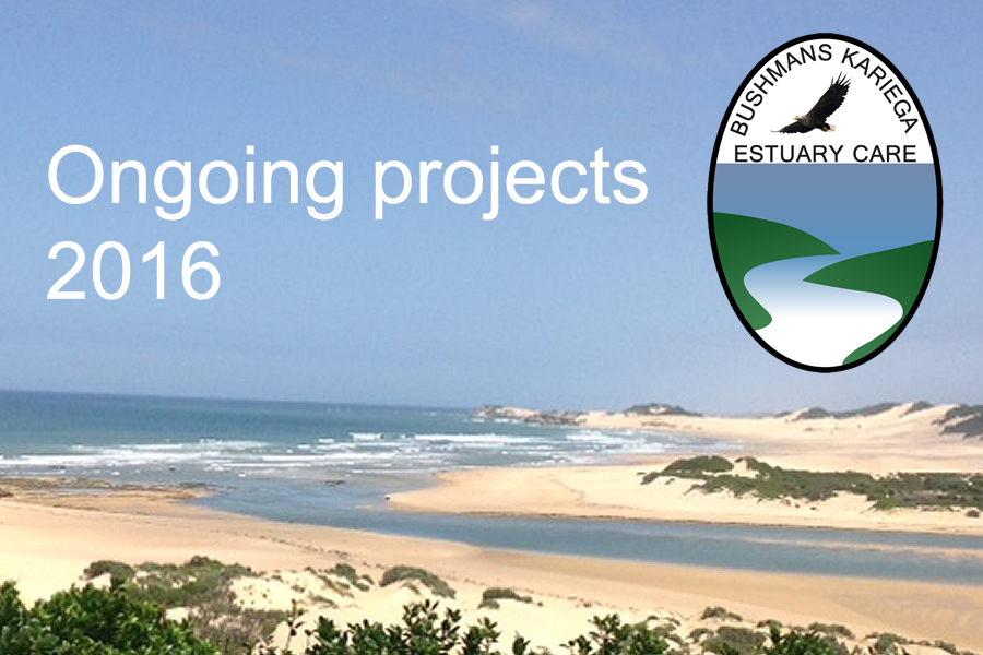 Bushmans Kariega Estuary Care - Our ongoing projects